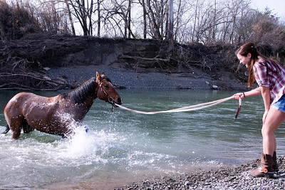 Horse splashing it's owner