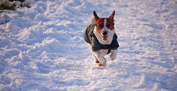 Mr Willis loving the snow