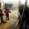 "Jarrett Wagner, 12, left, shows his little brother, Justin, 6, how to scratch a steer the proper way.<br /> The Wagner family of Erie work long hours to prepare their animals for the National Western Stock Show in Denver this month.<br /> For a photo gallery and video, go to  <a href=""http://www.dailycamera.com"">http://www.dailycamera.com</a>.<br /> Cliff Grassmick / January 6, 2010"