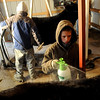 "Jarrett Wagner, 12, right, conditions the steer's coat while his brother Jake combs  and animal in the background.<br /> The Wagner family of Erie work long hours to prepare their animals for the National Western Stock Show in Denver this month.<br /> For a photo gallery and video, go to  <a href=""http://www.dailycamera.com"">http://www.dailycamera.com</a>.<br /> Cliff Grassmick / January 6, 2010"