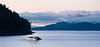 Humpback whale dives at sunset Panorama
