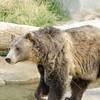 SRT1307_9402_Zoo