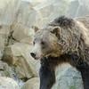 SRT1307_9395_Zoo