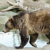 SRT1307_9405_Zoo
