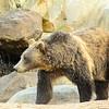 SRT1307_9396_Zoo