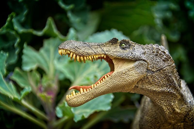 Taylor's toy dinosaur. Marysvale, Utah