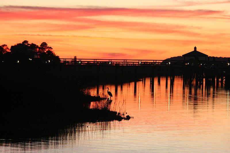 Folly Beach Marina Sunset with Great Blue Heron, Charleston SC