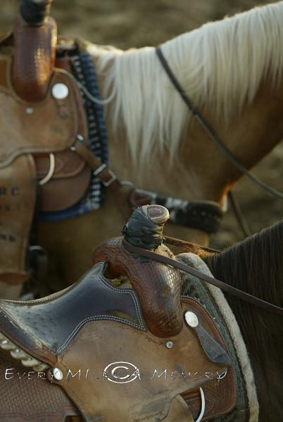 Saddled Up and ready to Ride - Arkansas 2007