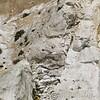 White Cliffs of Dover 18-04-15  0023