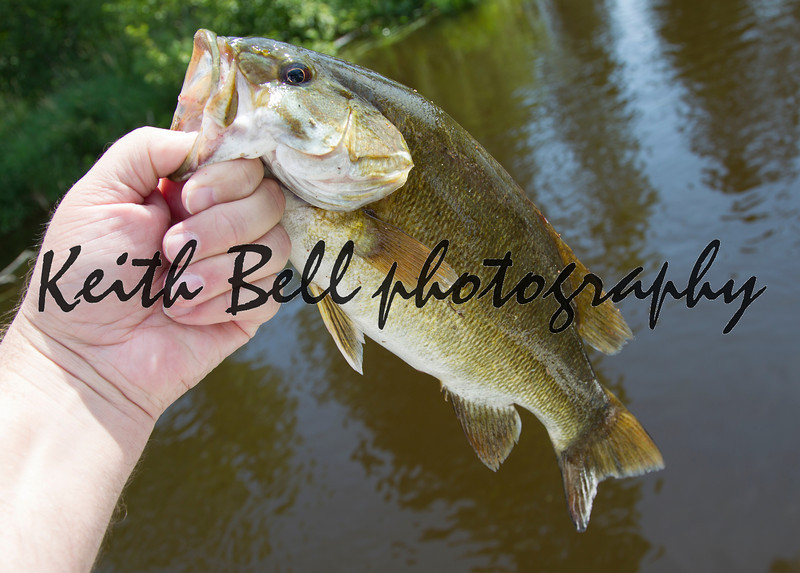 Smallmouth Bass in hand