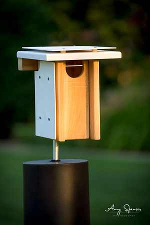 Bluebird nestbox with heat shields