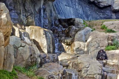 Cuddle - LA Zoo ref: b665b96e-20b2-4357-8fd9-0c3dd3510b7c