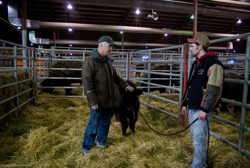 A young Bison in Regina with myself and Wade Kot.