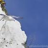 White Cliffs of Dover 18-04-15  0031