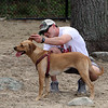 Troy Thibodeau of Wilmington plays with his rescue dog, Ava, a Lab mix, at Wilmington Dog Park. (SUN/Julia Malakie)