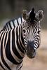 March 23, 2014: Philadelphia Zoo