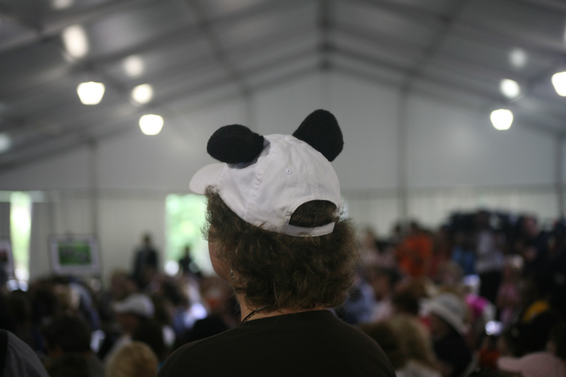 Some people get a little TOO much into this whole panda thing (this woman's husband had a matching hat, too!)