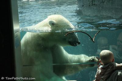 Toledo Zoo Toledo, OH