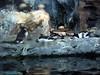 Addalie Penguins