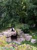 the male panda