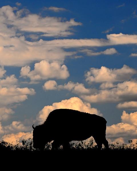 Trexler Nature Preserve - Lehigh County, PA - 2012