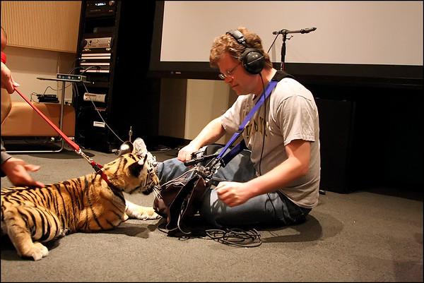 Tiger Cub Recording - 08/2009