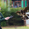 Colchester Zoo 25-01-14  0030