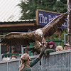 Colchester Zoo 25-01-14  0036