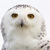 Hawk Conservancy 09-01-13  143