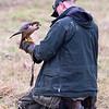 Hawk Conservancy 09-01-13  156