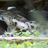 Marwell Zoo 08-10-16  0011