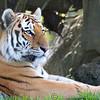 Marwell Zoo 22-09-14  016