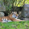 Marwell Zoo 22-09-14  014