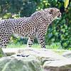 Paradise Wildlife Park 28-09-13  0012
