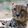 Paradise Wildlife Park 28-09-13  0007