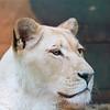 Paradise Wildlife Park 28-09-13  0001