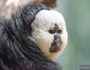 20130628_Philadelphia Zoo_53-Edit