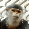 20130628_Philadelphia Zoo_31-Edit