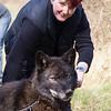 Wolf Conservation Trust 06-04-12  107