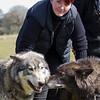 Wolf Conservation Trust 06-04-12  129