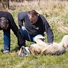 Wolf Conservation Trust 06-04-12  097