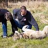 Wolf Conservation Trust 06-04-12  095