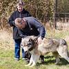 Wolf Conservation Trust 06-04-12  093