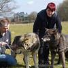Wolf Conservation Trust 06-04-12  133