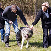 Wolf Conservation Trust 06-04-12  094