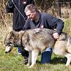 Wolf Conservation Trust 06-04-12  091