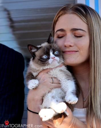 Grumpy Cat in Berkeley