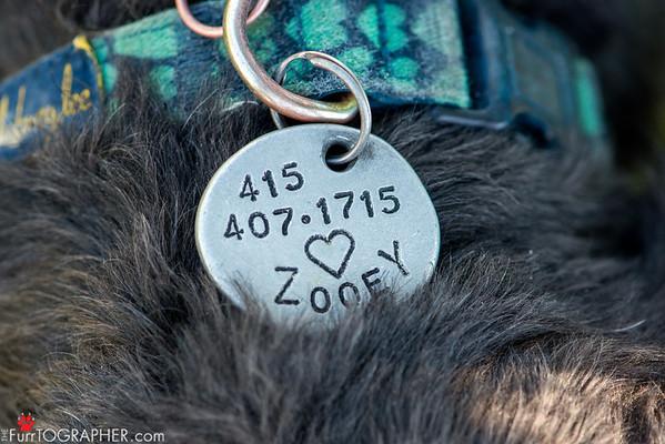 Zooey (51)