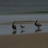 050409 Monterey Beach 01