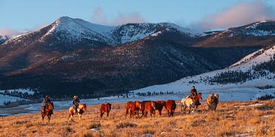 Music Meadows Ranch 8